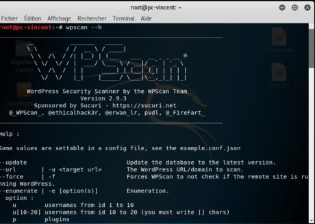 Installer Wpscan